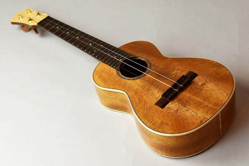 Hongoh Guitars Concert 390k JAPAN beautiful rare EMS F S