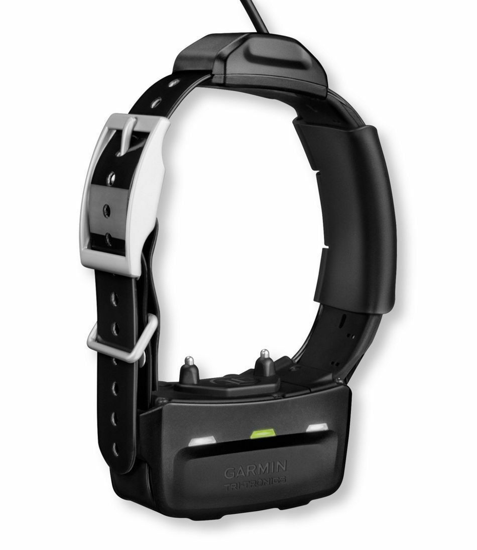 GPS Garmin TT 10 pista y dispositivo de tren perro collar adicional 010-01041-40