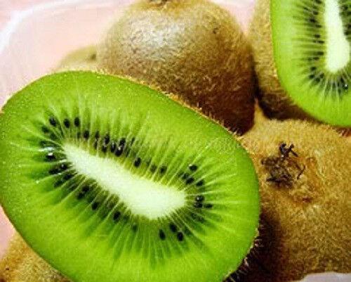 100 KIWI FRUIT Actinidia Vine Seeds +Gift & Comb S/H
