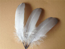 Wholesale! Beautiful natural goose feather 15-20cm / 6-8inches 20/50/100pcs