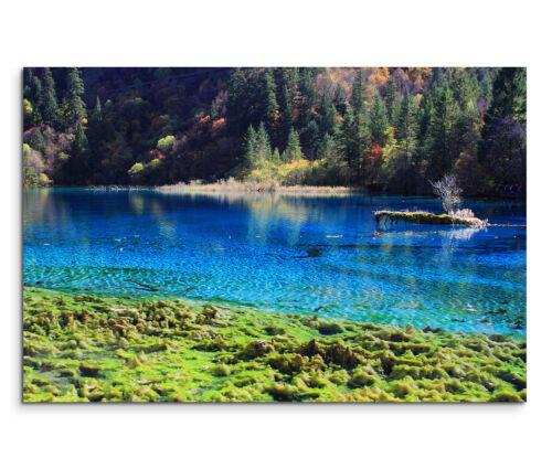 Leinwandbild 120x80cm auf Keilrahmen See,azur-blau,Wald,idyllisch,klar,türkis