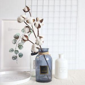 Natuerlich-Getrocknet-Baumwolle-Stielen-Landhausstil-Fake-Blumen-DIY-Laub-Dekor