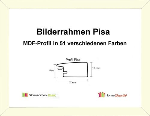 Pisa MDF-Bilderrahmen Standard I von 58 x 58 bis 58 x 59 cm