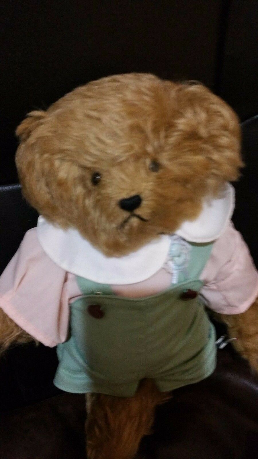 Bear-Brant James -handmade-by-Joyce-Sullivan Need-Just-a-Bear- 12