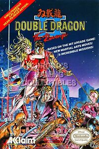 Rgc Huge Poster Double Dragon Ii Revenge Box Art Original Nintendo Nes Ddn002 Ebay