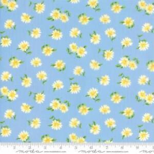 Summer-Breeze-V-Daisies-Light-Blue-Cotton-Fabric-by-Moda