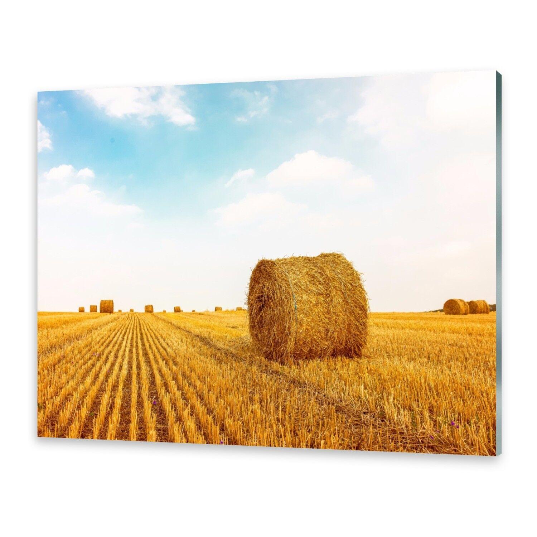 Vetro acrilico immagini Muro Immagine da plexiglas ® ® ® immagine balle fieno ee4888