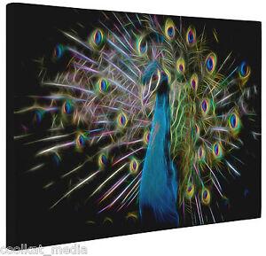 51aa5458c4 Canvas Abstract Peacock Print Wall Art Fractal Bird Print Blue Black ...