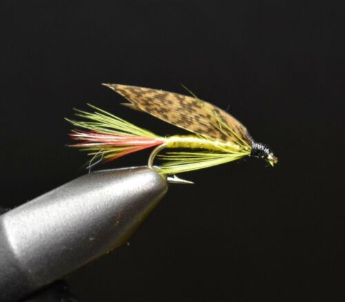 Ferguson Wet Fly Fishing Flies 2 mouches Taille 12