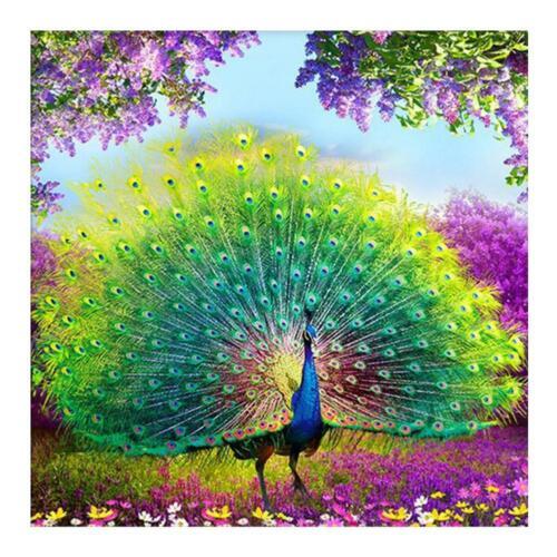 5D DIY Full Drill Diamond Painting Peafowl Animal Cross Stitch Embroidery $S1