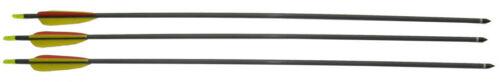 3 frecce per arco in carbonio