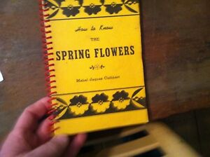x-40-HOW-TO-KNOW-SPRING-FLOWERS-MABEL-JAQUES-CUTHBERT-1943