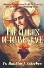 The Glories of Divine Grace: A Fervent Exhortation to All to Preserve and to Grow in Sanctifying Grace by REV Fr Matthias J Scheeben (Paperback / softback, 2001)