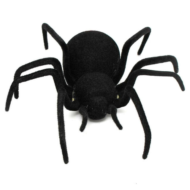RC Remote Controlled Spider Remote Control Spider Toy Gift Halloween Giant  I4U3
