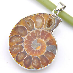 Rare-Huge-Genuine-Fossil-Ammonite-Vintage-Silver-Necklace-Pendants-For-Mother