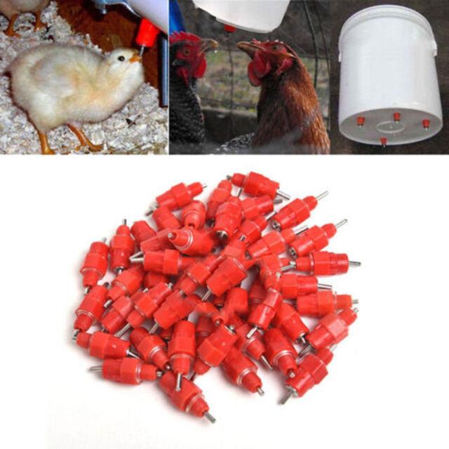 100 Pcs Water Nipple Drinker Chicken Feeder Poultry  Hen Duck Screw In Style