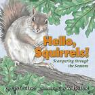 Hello, Squirrels!: Scampering Through the Seasons by Linda Glaser (Hardback, 2006)