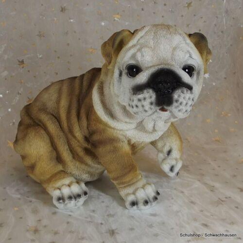 Gartenfigur Hund Englische Bulldogge 3072 Garten Deko Figur