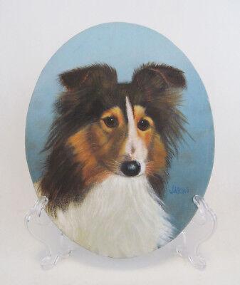 English Picture Print Sheltie Collie Dog Mates Art
