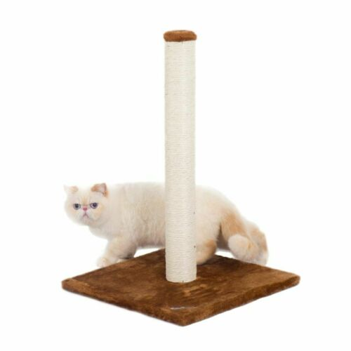 """24/"""" Fluffy Paws Cat Scratching Post with Carpet Covered For Small Cats"""