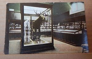 Postcard-America-south-room-Roger-Williams-Museum-Providence-R-I-unposted