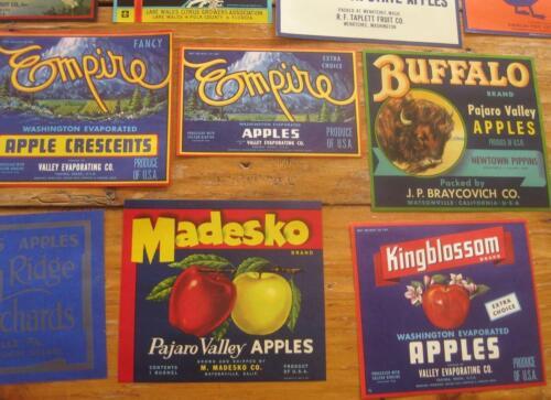 Fifty different mostly larger sized fruit crate labels  ORIGINAL VINTAGE NOS