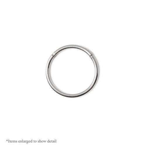 Lip 16ga -1//2 316L Surgical Stee  Hinged Segment Ring- Ear Cartilage Nose