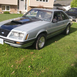 1984 Ford Mustang Hatch Foxbody