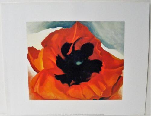 GEORGIA O/'KEEFFE RED POPPY 1927 MUSEUM QUALITY FINE ART PRINT REPRO 16 x 20