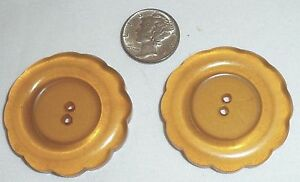 Pair (2) XL Extra Large Bakelite Thick Chunky Apple Juice Scallop Daisy Buttons