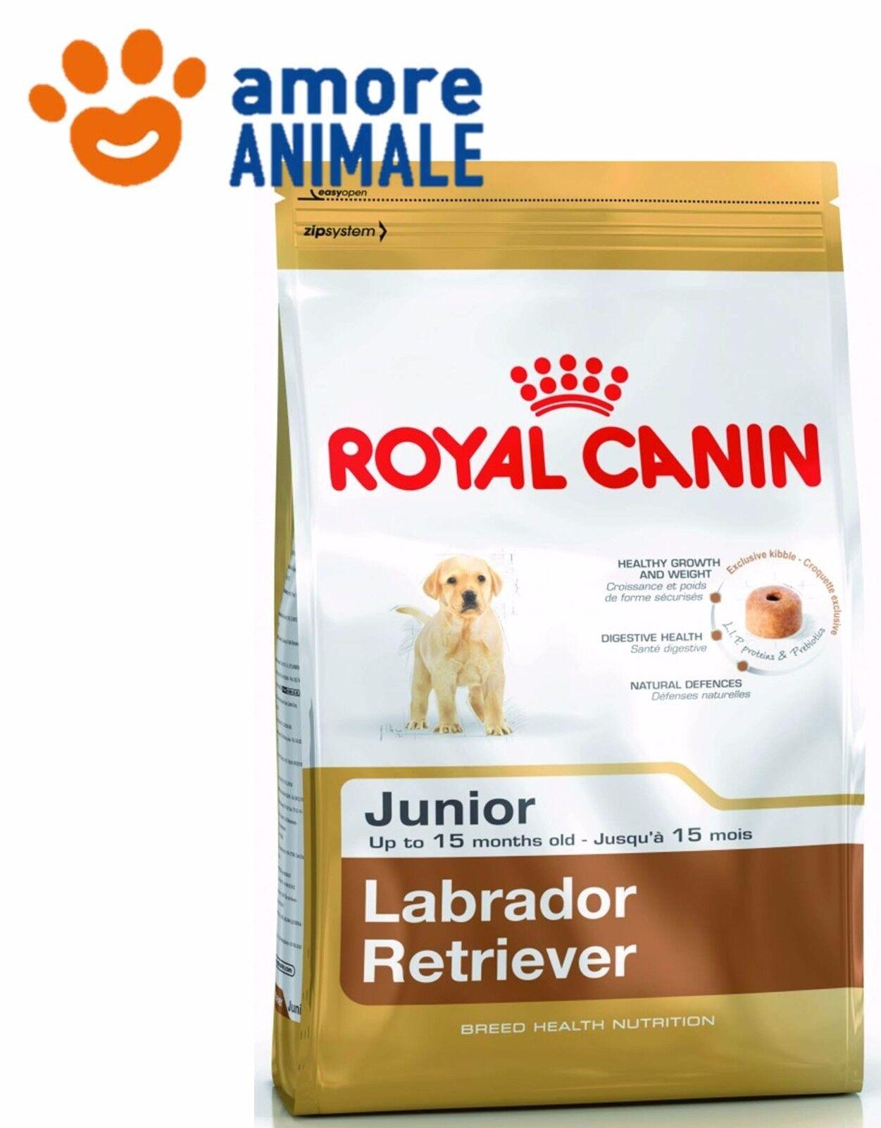 Royal Canin Labrador Junior 12 Kg