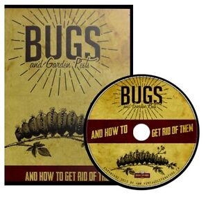 Bugs garden pests how to get rid of them 54 vintage - How to get rid of bugs in garden ...