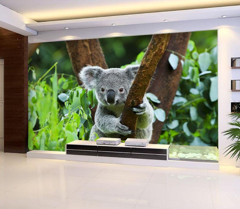 3D Koala Grasping Tree 8941 Paper Wall Print Wall Decal Wall Deco Indoor Murals