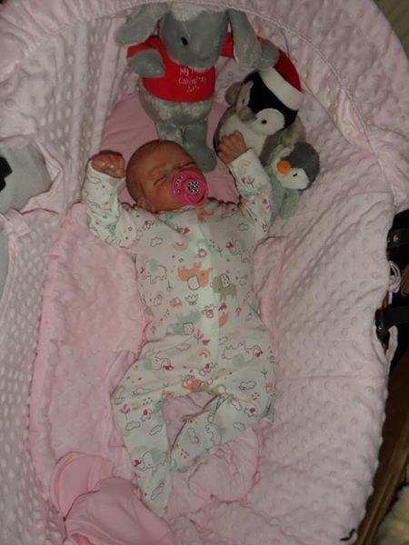 Reborn baby girl doll newborn lifelike baby doll Christmas birthday birthday birthday Gift f8ed55