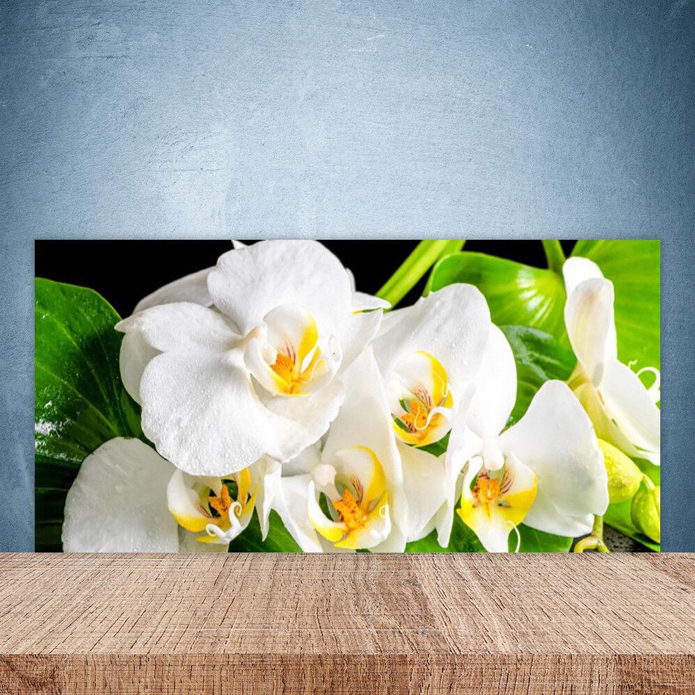 Crédence de cuisine en verre Panneau Paroi 100x50 Floral Pétales