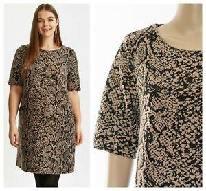 ex-Evans-Animal-Snake-Print-Tunic-Shift-Versatile-Dress