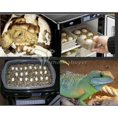 Reptile Egg Incubator Turtles Snakes Hatching Digital Brooder Reptopro 6000 Pro