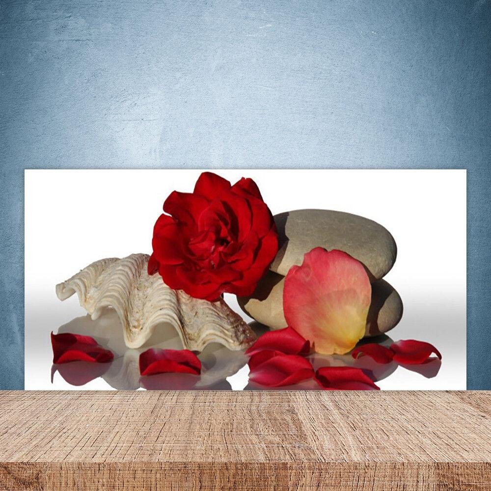 Crédence de cuisine en verre Panneau Paroi 100x50 Art Rose Coquille