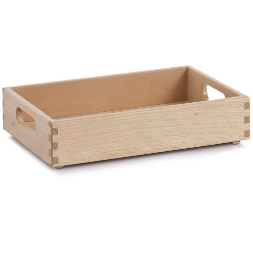 Généralistes caisse Hêtre Bois Caisse en bois jouet caisse aufbwahrungsbox caisse coffre