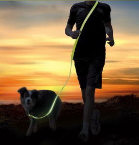 USB Rechargeable Night Safety Light Hi-Vis Dog Extra Long Lead Collar Attachment