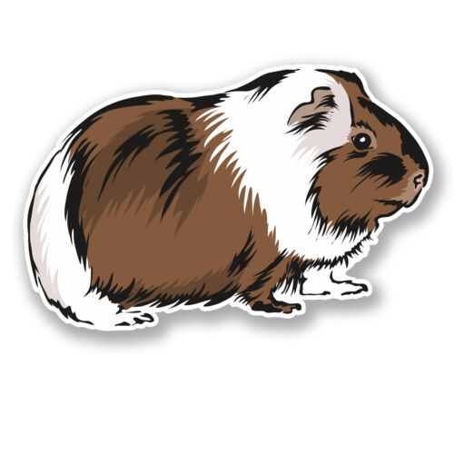 2 X 10 Cm conejillo de Indias pegatina de Vinilo calcomanía auto Laptop Tablet Casco Animal # 5840