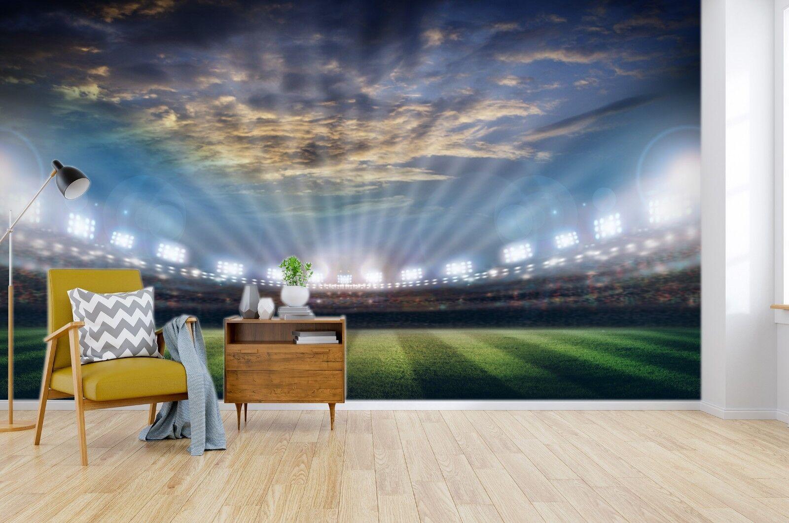 3D Football Field 944 Wallpaper Mural Paper Wall Print Indoor Murals CA Summer