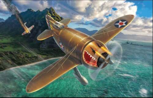 "Dora Wings 1//48 DW48010 Granville P-45B /""Bee Killer/"" plastic kit"