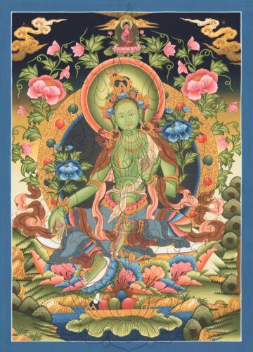 """Thangka  Grüne Tara /""""Bester Druck/"""" Buddha Malerei Nepal T08"""
