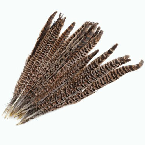 20 stücke natur fasan schwanzfedern 12-14 zoll lange handwerk party diy