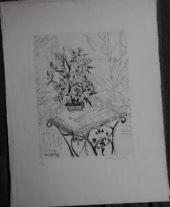 Suzanne-DUCHAMP-VILLON-Gravure-eau-forte-etching-signee-numerotee-arbre-de-jade