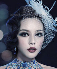 Black Wedding Headdress Birdcage Face Veil Cap Bridal Feather Net Bow
