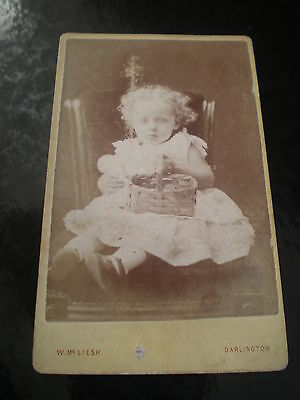 Cdv old photograph girl basket by McLiesh at Darlington c1870s Ref 511(2)