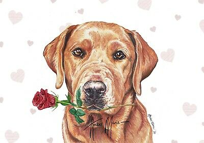 Fox Red Labrador Blank Christmas Greeting Card