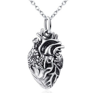 925 sterling silver necklace anatomical human heart pendant surgeon image is loading 925 sterling silver necklace anatomical human heart pendant aloadofball Images